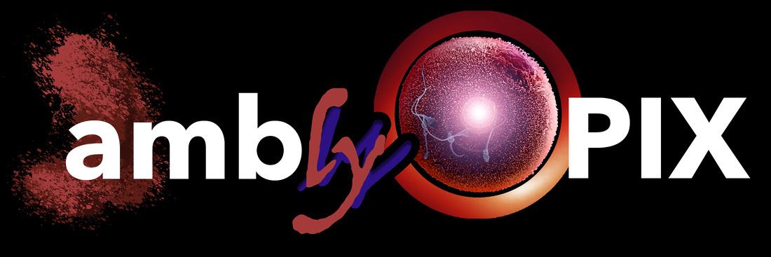 AmblyoPIX by Lamblyoptic